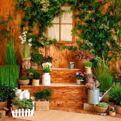 Giardino-d'inverno-con-piante